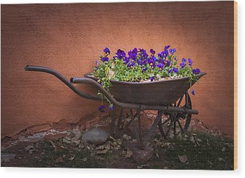Wheelbarrow Full Of Pansies Wood Print by Christina Lihani