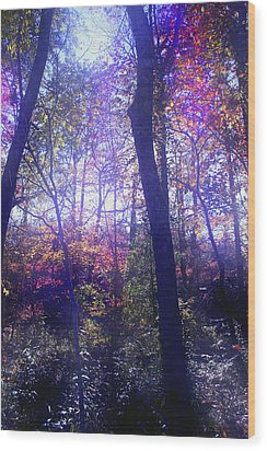 When Forests Dream Wood Print by Nina Fosdick