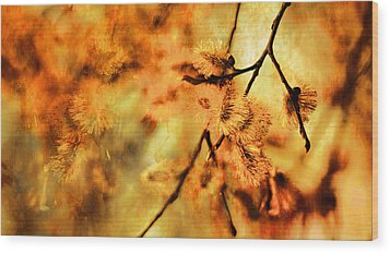 Wood Print featuring the digital art When Spring Awakens by Fine Art By Andrew David