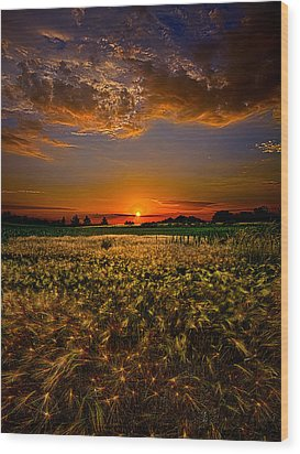 When Time Stood Still Wood Print by Phil Koch