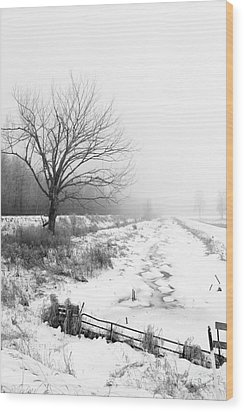 When Winter Comes Wood Print by Cathy  Beharriell