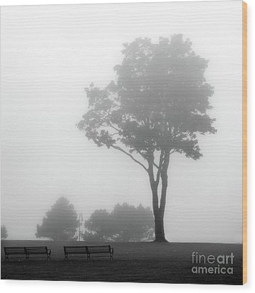 Wood Print featuring the photograph Where Do I Go When It's Gone by Dana DiPasquale