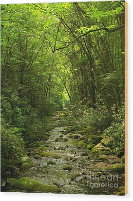 Where It Leads Wood Print by Southern Photo