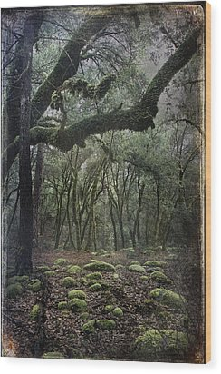 Where The Wild Hearts Roam Wood Print by Laurie Search