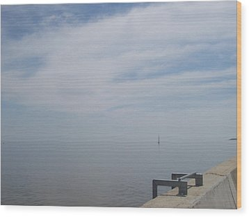 Wood Print featuring the photograph Where Water Meets Sky by Mary Mikawoz