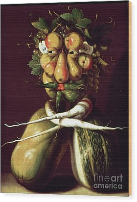 Whimsical Portrait Wood Print by Arcimboldo