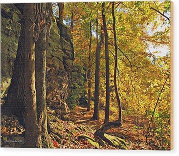 Whipp's Ledges In Autumn Wood Print by Joan  Minchak