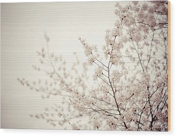 Whisper - Spring Blossoms - Central Park Wood Print by Vivienne Gucwa