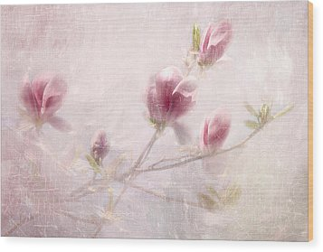 Whisper Of Spring Wood Print by Annie Snel