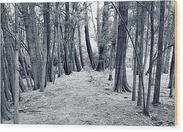 Whispering Forest Wood Print by Wayne Sherriff