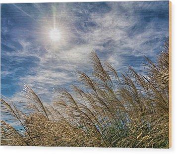 Whispering Grasses Wood Print