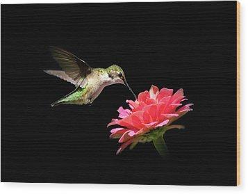 Whispering Hummingbird Wood Print by Christina Rollo