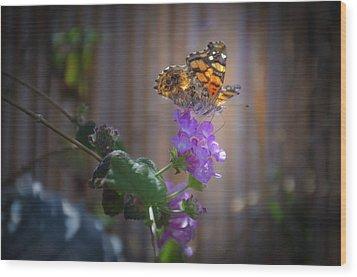 Whispering Wings 2 Wood Print by Mark Dunton
