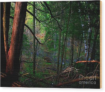 Wood Print featuring the photograph Whisperings by Elfriede Fulda