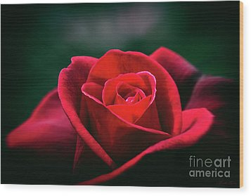 Wood Print featuring the photograph Whispers Of Passion by Linda Lees