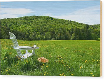 White Adirondack Chair In A Field Of Tall Grass Wood Print by Sandra Cunningham