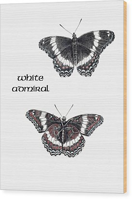White Admiral Butterfly Wood Print