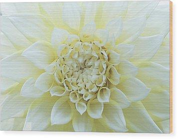 White Angel Wood Print by Don Mennig