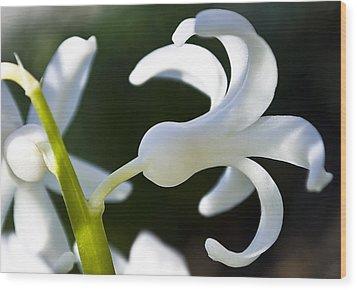 White Bell Wood Print by Svetlana Sewell