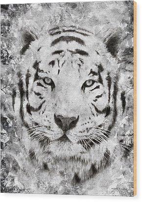 White Bengal Tiger Portrait Wood Print