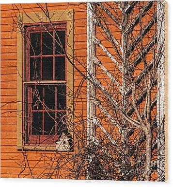 White Bird House Wood Print