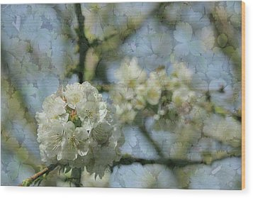 White Blossom Flowers With Leaves Texture Background Wood Print