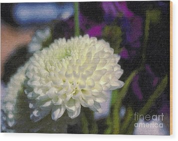 Wood Print featuring the photograph White Chrysanthemum Flower by David Zanzinger