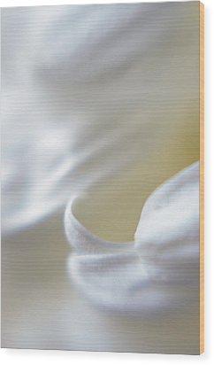 White Curls Wood Print by Jessica Dzupina