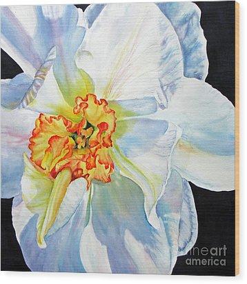 White-daffodil Wood Print by Nancy Newman