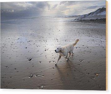 White Dog Wood Print by Svetlana Sewell