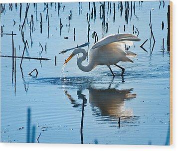 White Egret At Horicon Marsh Wisconsin Wood Print by Steve Gadomski