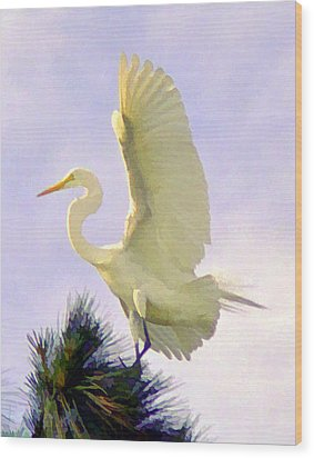 White Egret In Tree Wood Print by Joel Cohen