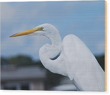 Wood Print featuring the photograph White Egret by Margaret Palmer