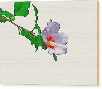 White Flower And Leaves Wood Print
