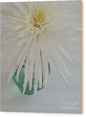 White Flower In A Vase By Jasna Gopic Wood Print by Jasna Gopic