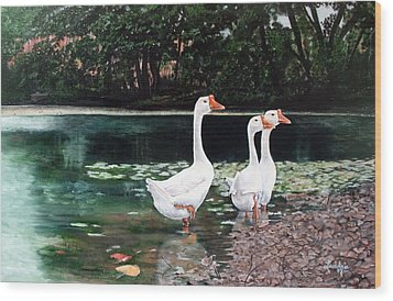 White Geese In Early Fall '07 Wood Print