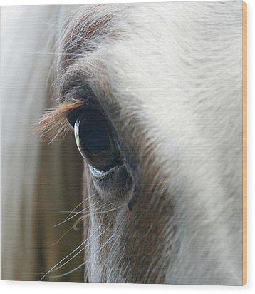 White Horse Eye Wood Print by Doug88888