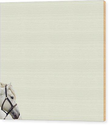 White Hourse Wood Print