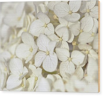 Wood Print featuring the photograph White Hydrangea by Kerri Farley