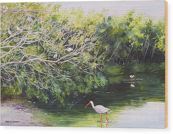 White Ibis Haven Wood Print