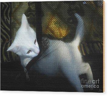 White Kitten Wood Print by David Lee Thompson