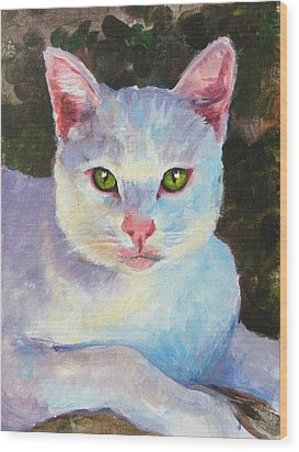 White Kitty Wood Print by Debra Jones