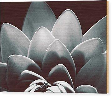 White Lotus At Dawn Wood Print by Sumit Mehndiratta