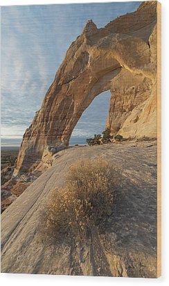 White Mesa Arch Wood Print by Dustin LeFevre