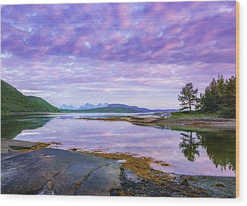 Wood Print featuring the photograph White Night In Nordkilpollen Cove by Dmytro Korol