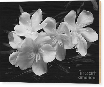 White Oleander Wood Print by Amar Sheow