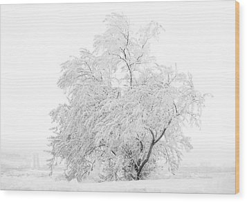 White On White Wood Print by Marilyn Hunt