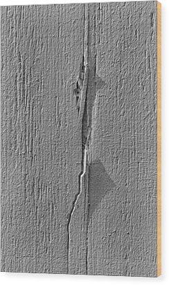 White On White Wood Print by Robert Ullmann