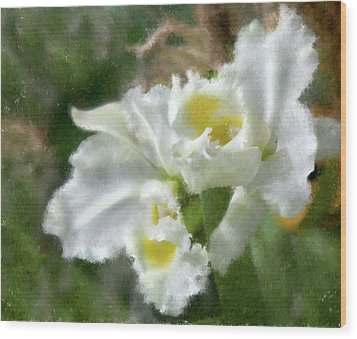 White Orchid Wood Print by John Hix