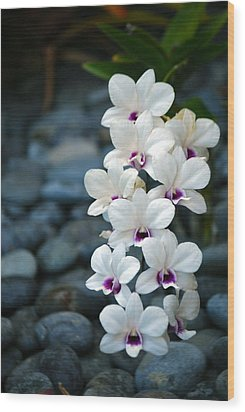 Wood Print featuring the photograph White Orchids by Debbie Karnes